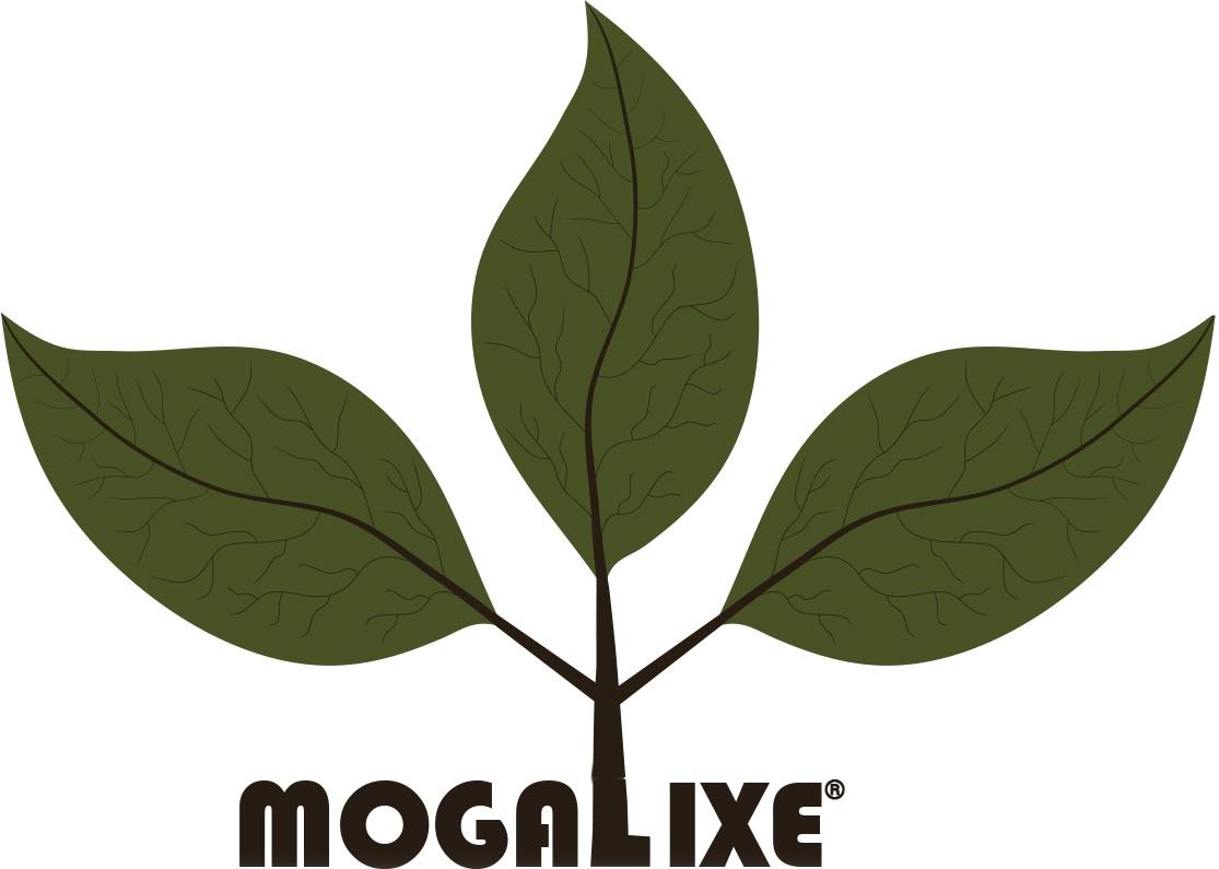 mogalixe-eco-house-logo-vt1.jpg