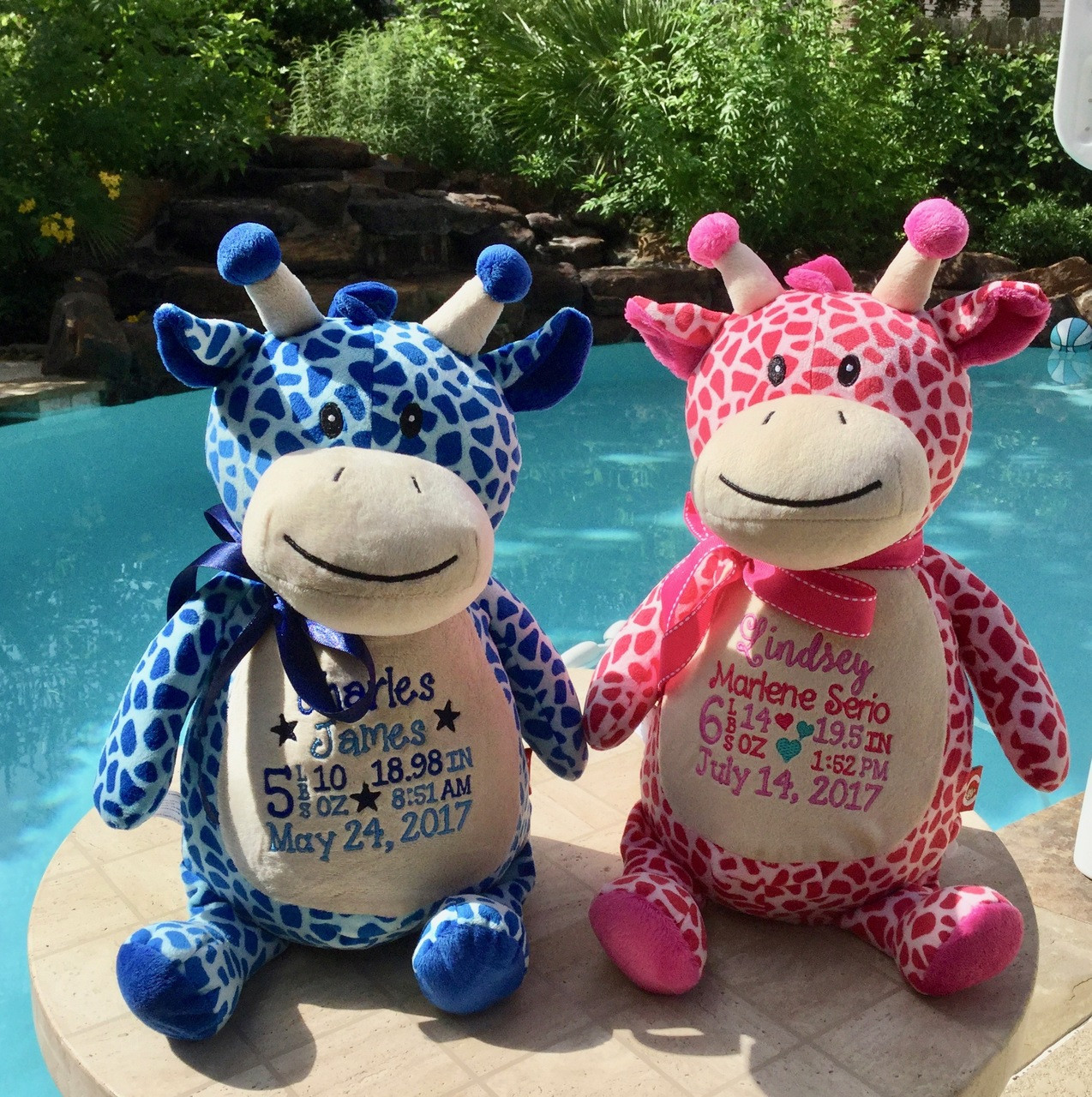 Personalized Stuffed Animal Cubbies