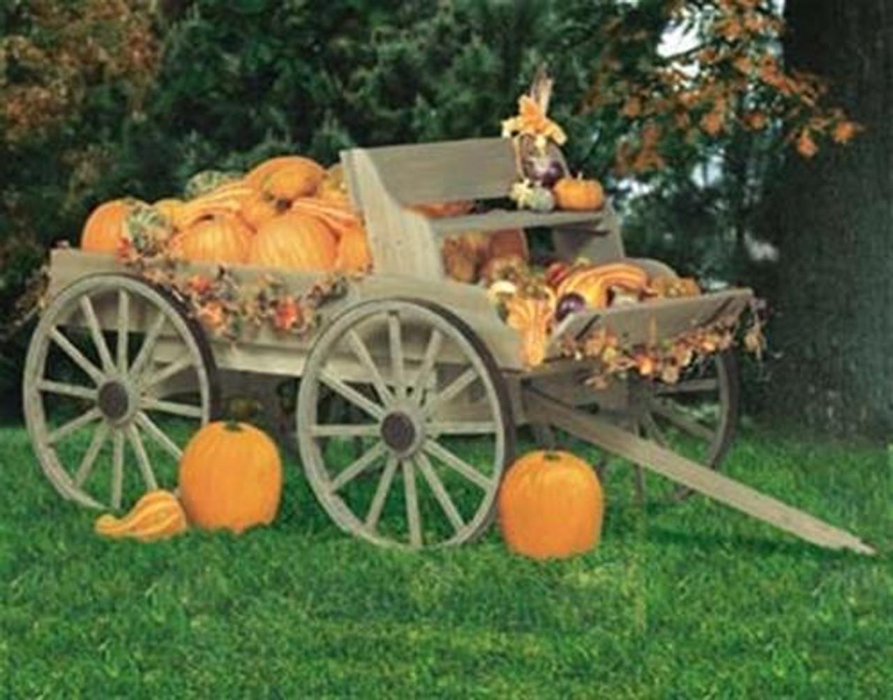 Winfield Collection Buckboard Wagon Plan