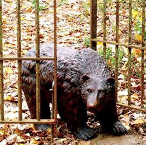 Garden Statuary Bear' w/Rustic Finish | 50751
