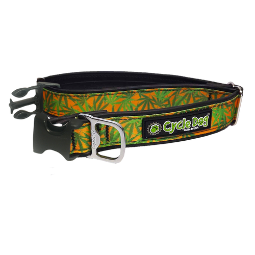 CD-IN WEEDS COLLAR