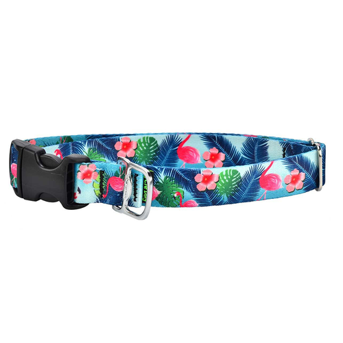 CD-FLAMINGO COLLAR