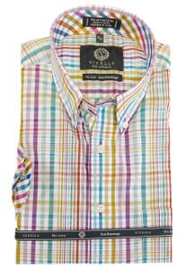 Viyella Long Sleeve Button-Down Plaid Shirt in Light Multi