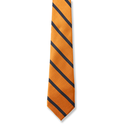 Men's Striped Tie [NY264-3-SUN/NV-SUN W/NV]