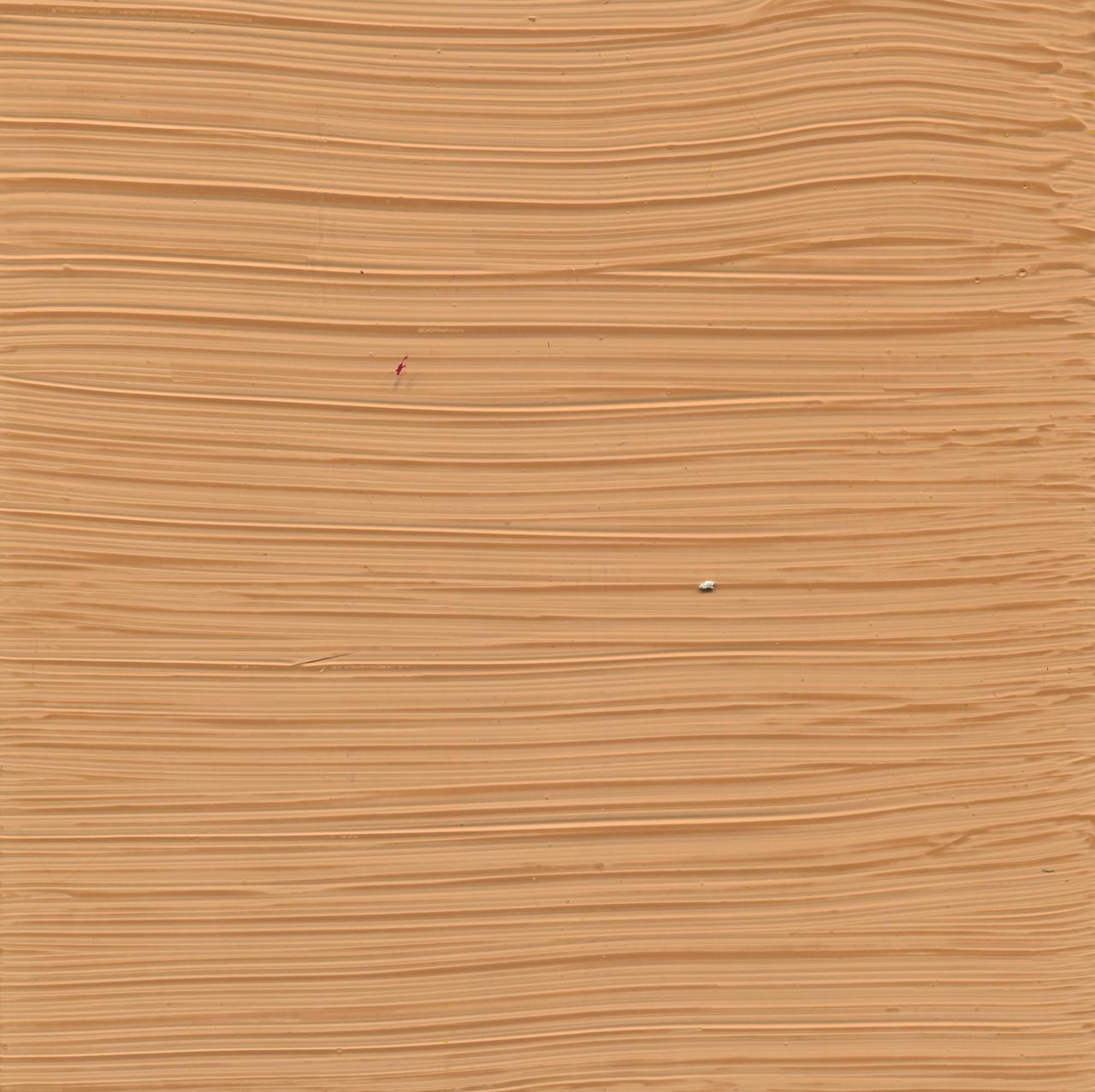 Venetian Plaster Texture Tinted Trowel and sponge application