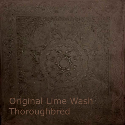 Original Lime Wash, Thoroughbred