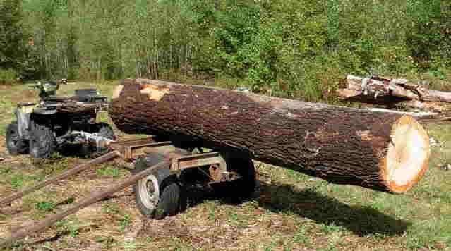 tr-wood.jpg