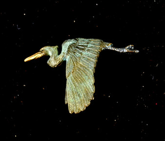 "Cavin Richie design flying heron pin, cast in lightweight artist's bronze, 1.1"" X 1.6 "". Casting was created from one of Cavin's original shed-elk antler or  woolly mammoth ivory carvings, to give the finished product more natural detail than is possible with a wax carving. Cast in the USA and hand finished in Washington State."