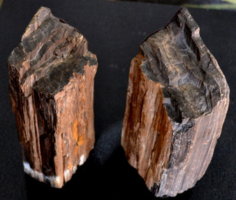Petrified wood book ends, lined in felt, from the South Dakota badlands.
