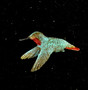 "Cavin Richie design hummingbird in flight pin, cast in lightweight artist's bronze, 1.4 X 1.6"".  Casting was created from one of Cavin's original shed-elk antler or  woolly mammoth ivory carvings, to give the finished product more natural detail than is possible with a wax carving. Cast in the USA and hand finished in Washington State."