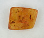 Amber gemstone contains several fruit flies, ants, insect eggs and beautiful leaf segments.