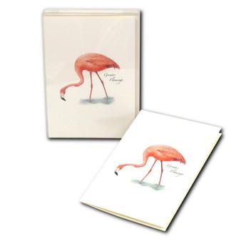 Flamingo Boxed Notes