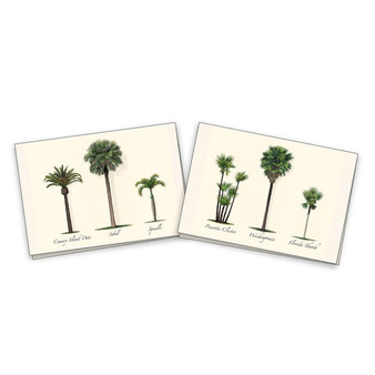 Palm Boxed Notes