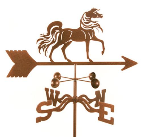 Arabian Weathervane