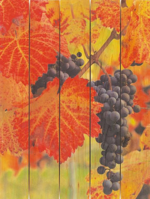 Summer Harvest Wall Art