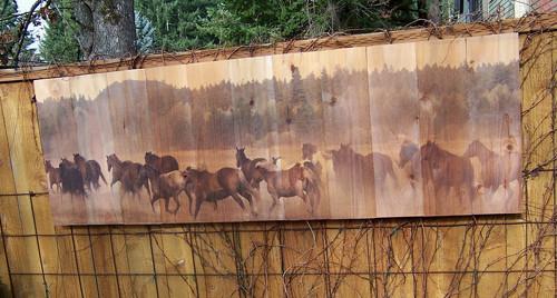 Wild Horses Wall Art