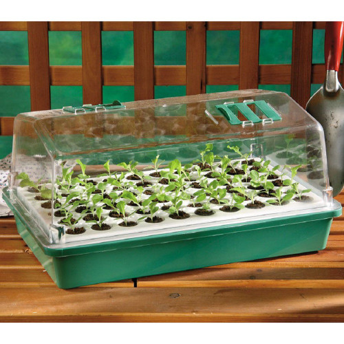60 Cell Bio Dome Seed Starter Kit