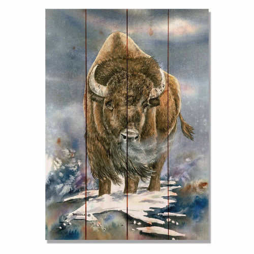 "American Buffalo Wall Art 14"" x 20"""