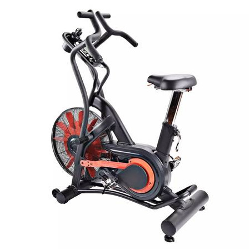 Stamina X Air Bike with Dynamic Air Resistance and LCD Monitor