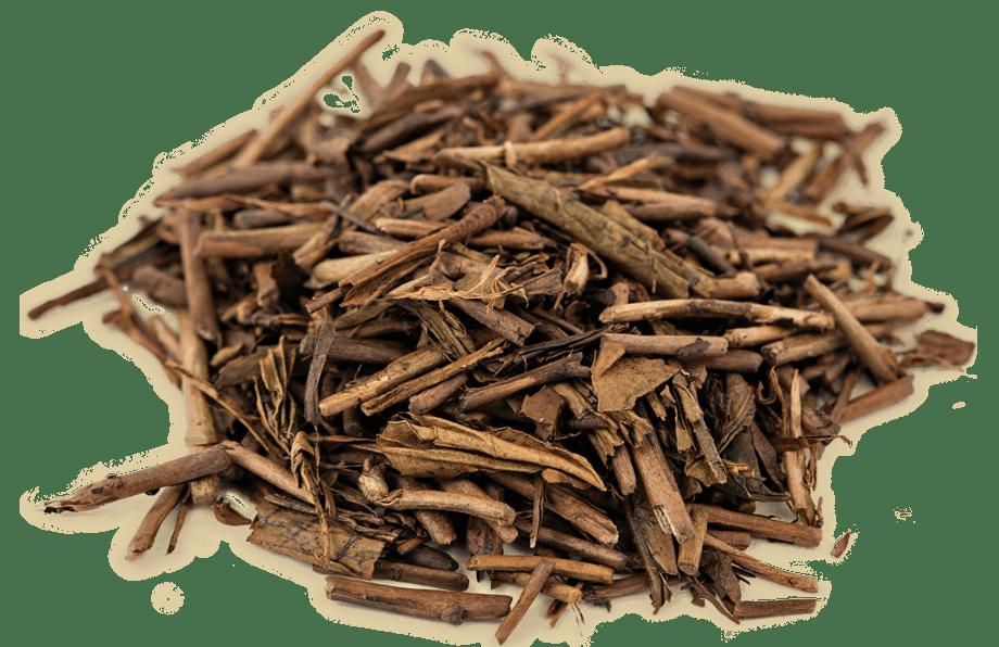 Organic Hojicha Green Tea