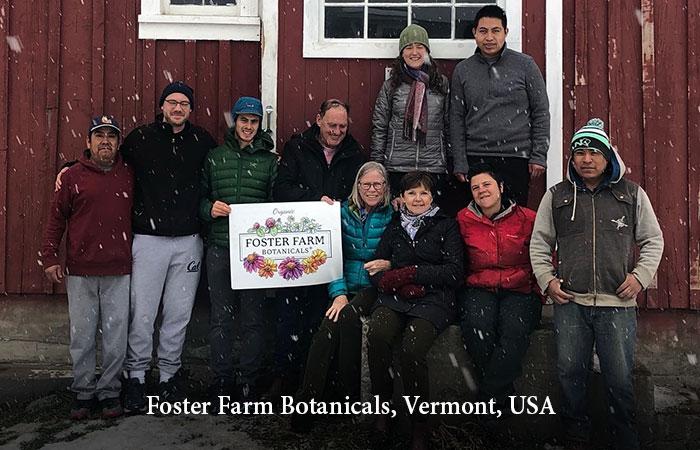 Foster Farm, Vermont, USA