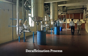 tea-decaffeination-process.jpg