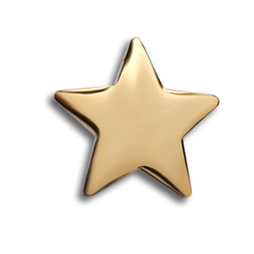 Gold Star Lapel Pin