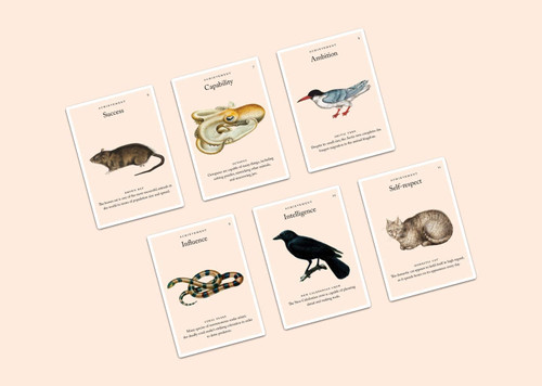 The Values Deck Card Sorting Game - Animal Kingdom Edition