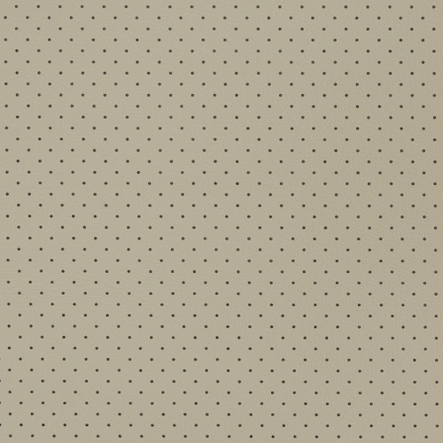 Stone Perforated