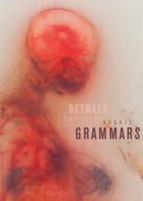 Between Grammars