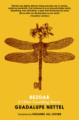 Bezoar: And Other Unsettling Stories
