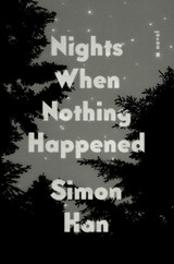 Nights When Nothing Happened: A Novel