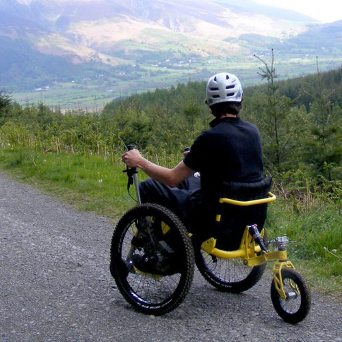 E-Ripper Mountain Trike