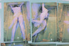 Carolee Schneemann Museum Sarcophagus Photo Original Screen-Print 1979