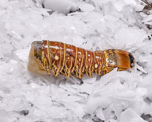Lobster Tail (Each) Delivery
