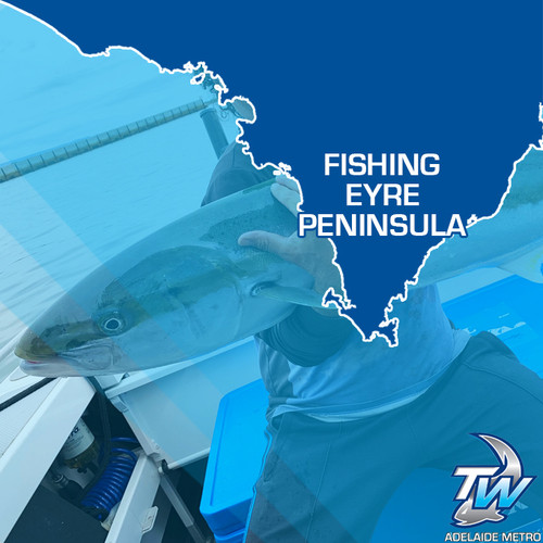 Eyre Peninsula Fishing Guide