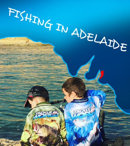 ​Fishing Adelaide Land Based – A guide to fishing in the South Australian capital.