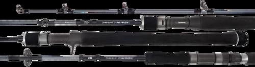 Daiwa 20 TD Saltwater Overhead Rod