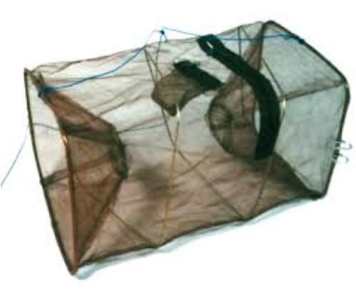 """Seahorse Shrimp Bait Trap 1 1/2"""" Funnel"""