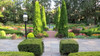 Garden Path to Water Fountain with Emerald Green Arborvitae