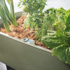Nest Self-Watering Planter with Plants