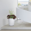 Pleat Planter Inside