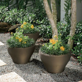 Juno Planters with Plants