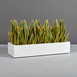Bonn Low Rectangular Planter with plants