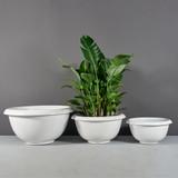 Niagara Traditional Bowl Planters with plants