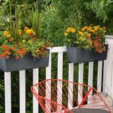Balconera Color Rectangular Balcony Planter