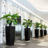 Commercial Cubico Alto Tall Square Planters Indoors