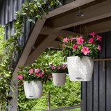 Nido Cottage Round Hanging Planters on the Overhang
