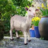 Billy Goat Statue in the Garden