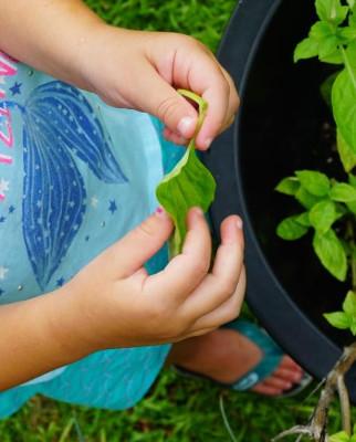 4 Secrets To Get Your Child Gardening